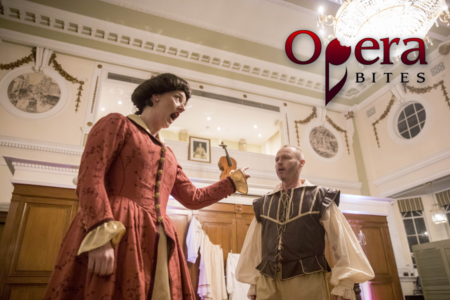 Opera-Bites-Opera,-Wine-&-Dine-Series-Castlereagh-Boutique-Hotel